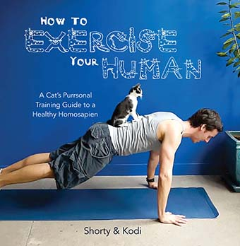 how to exercise human book