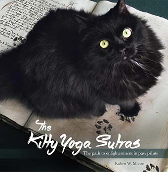 kitty yoga sutras cat book