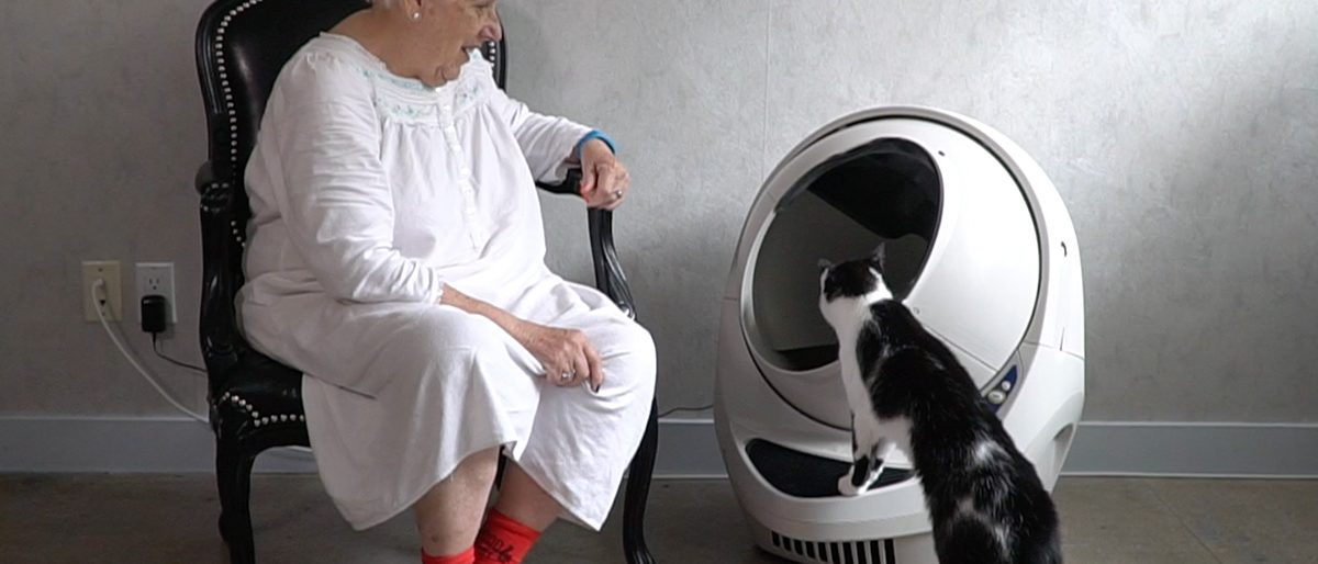 Permalink to: Litter Robot Review, DISCOUNT, & Cats' Reaction